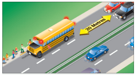 School Bus median
